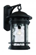 Trans Globe 40372 BK - 1 Light Wall Lantern - LARGE
