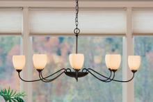 Hubbardton Forge - Canada 101308-SKT-05-HH0083 - Oval Large 8 Arm Chandelier